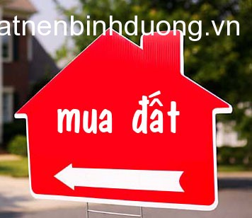 can-mua-dat-my-phuoc-4