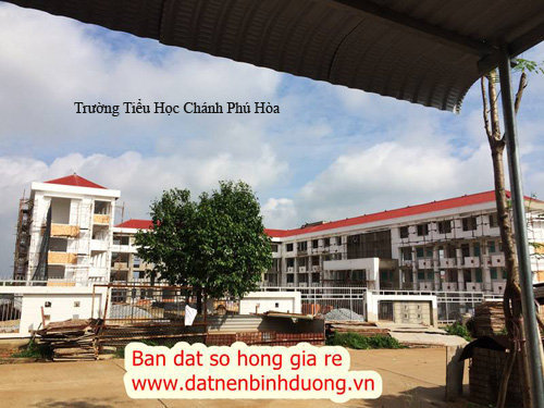 truong-hoc-chanh-phu-hoa-gan-my-phuoc-3-binh-duong